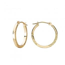 Ladies Fashion Hoop Earrings